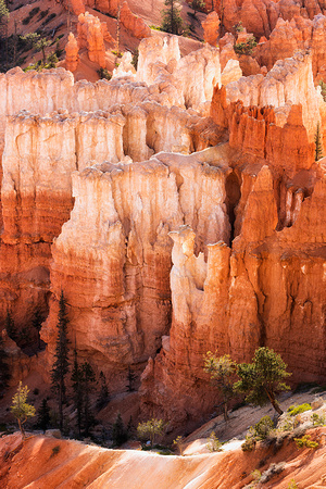 Bryce Canyon Color